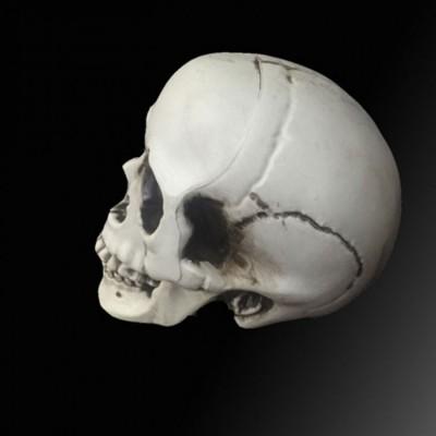 Sọ người trang trí tỉ lệ 1:1 hàng cực độc tại dmax98